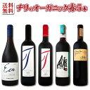 [1,500円以上で送料無料]【送料無料】ワイン醸造の理想郷、チリのオーガニックワイン5本セット!
