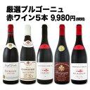 【送料無料】特大感謝のブルゴーニュ赤ワイン大放出5本セット!