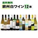 [クーポンで7%OFF]白ワイン セット 【送料無料】第79弾!超特大感謝!≪スタッフ厳選≫