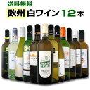 白ワイン セット 第83弾!超特大感謝!≪スタッフ厳選≫の激得白ワインセット 12本!