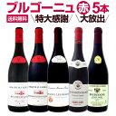 [クーポンで10%OFF]【送料無料】特大感謝のブルゴーニュ赤ワイン大放出5本セット!!