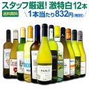 白ワイン セット 【送料無料】第101弾!超特大感謝!≪スタ...