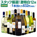 白ワイン セット 【送料無料】第107弾!超特大感謝!≪スタッフ厳選≫の激得白ワインセット 12本!