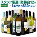 白ワイン セット 【送料無料】第110弾!超特大感謝!≪スタッフ厳選≫の激得白ワインセット 12本!