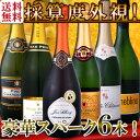 第21弾!ベスト・オブ・スパーク!京橋ワイン厳選!高級クレマンも入った極旨泡ばかりの辛口スパークリング6本セット!