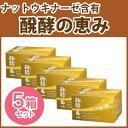【送料無料!】ナットウキナーゼ+ケフィア醗酵の恵み 5箱セット(3粒×40粒入×5箱)