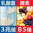 【 送料無料 】しあわせ発酵〜酵素とケフィア〜(186粒入/...