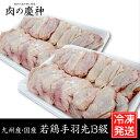 【九州産・国産】若鶏手羽先B級品 約1kg(500g×2パッ...