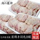【九州産・国産】若鶏手羽先B級品約1.5kg(500g×3P...