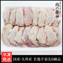 【国産・九州産】 若鶏手羽先B級品 約8kg(500g×16パック) とり肉/訳あり/ワケあり/
