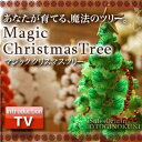 A mysterious tree (normal type / green) which the TONIGHT ☆ name which can be brought up in the [stock ant] left side of the stage, and flares up in two people in appreciation ♪ is brought up in magic tree 12 hours [popular among birthday present & gifts in Father's Day] [point deep-discount sale]
