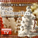 A mysterious tree (normal type / white) which the TONIGHT ☆ name which can be brought up in the [stock ant] left side of the stage, and flares up in two people in appreciation ♪ is brought up in magic tree 12 hours [popular among birthday present & gifts in Father's Day] [point deep-discount sale]
