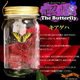 【在庫アリ】【送料380】 凄すぎて笑っちゃう!本物の蝶を越えた美しき躍動★ 超蝶 (ちょうちょう)- キアゲハ -the Wonder Butterfly【 誕生日 プレゼントに】【RCP】