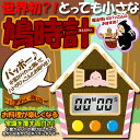 とびだすお菓子なクックタイマー チョコ 【愛くるしい 鳩時計 型 キッチンタイマー 電子鳩時計 】
