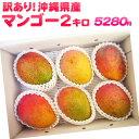 【送料無料】訳あり 沖縄産マンゴー 約2kg (規格外アップルマンゴー)