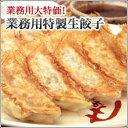 【タレ別売】パリッとジューシー!ボリューム満点☆(業務用)特製生餃子