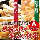 【送料・税込】米粉の皮で包んだ餃子セットA(野菜餃子1袋×肉餃子2袋×タレ5つ)