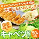 キャベツたっぷり〜キャベツ餃子 50個入り