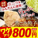 【送料別・送料無料商品と同梱お勧め】黄ニラ餃子 餃子 美味しい ジューシー パリパリ 黄ニラ