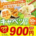 【訳あり【ぶさいくちゃん餃子】[形不揃い]キャベツ餃子 数量...