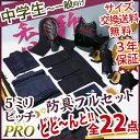 剣道 防具 入門 フルセット 5ミリピッチ刺し 「香雅」JFP PRO