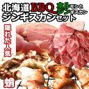 食品 - 北海道BBQ ジンギスカンセット ご当地グルメ お取り寄せ【室蘭 ホルジン】【送料無料】