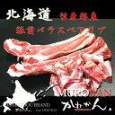 北海道BBQ バーベキュー用 豚スペアリブ 前バラスペア【送...