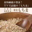 【もち麦・送料無料】(兵庫県産)もっちもちで美味しい! 低GI食品[GI値:50]水溶性