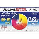 【指定第2類医薬品】プレコール 持続性カプセル 36カプセル