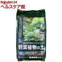 プロトリーフ 観葉植物の土(2L)