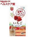 果実のおたより いちご(10g)