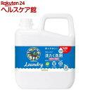 ヤシノミ洗たく洗剤 コンパクトタイプ つめかえ用(5kg)【ヤシノミ洗剤】【送料無料】