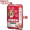 アイムス 成犬用 健康維持用 ラム&ライス 小粒(12kg*2コセット)【アイムス】
