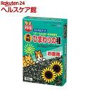 ミニマルフード 新鮮大粒ひまわりの種(400g)【ミニマルフード】