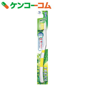 デンタルプロ フレッシュ ハブラシ 歯ブラシ