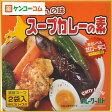 スープカレーの素 2袋入[スープカレー(レトルト)]【あす楽対応】