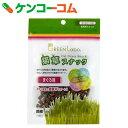 グリーンラボ 猫草スナック まぐろ味 40g[グリーンラボ 猫の草(猫草)]【あす楽対応】
