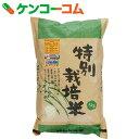 ムソー 平成28年度 特別栽培米 新篠津あやひめ 白米 5kg[ムソー 白米]【送料無料】