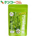 べにふうき茶の粒 28.8g(240mg×120粒)[エヴァウェイ べにふうき(紅富貴)]
