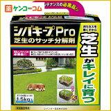 シバキープPro 芝生のサッチ分解剤 1.5kg[シバキープ 肥料 芝生用]【あす楽対応】