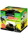 カンタン昆虫標本セット