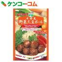 三育 中華風大豆ボール 100g[低コレステロール食品]