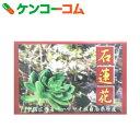 石蓮花茶 2.8g×30袋[石蓮花茶]【送料無料】