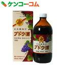 【第3類医薬品】日本薬局方 ブドウ酒[滋養強壮剤/液剤]