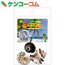オカヤドカリの宿替え貝殻 M[SANKO(三晃商会) 宿替え用貝殻]