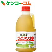 北海道 てんさいオリゴ 2.5kg[ラフィノース(ビートオリゴ糖)]【送料無料】