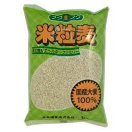 Nagakura 上滿是穀物燕麥 (丸麥) 1 公斤 upup 7