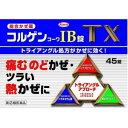 【第(2)類医薬品】コルゲンコーワIB錠TX 45錠(感冒薬...