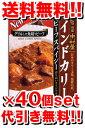 新宿中村屋インドカリービーフスパイシー 200g[40個セット](1ケース) (レトルト食品 レトルトカレー)
