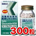 Sato_glu300